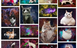 omg cats in space | ...