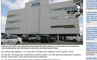 PETA killed more than 1,600 cats and dogs at its Virginia headquarters last year - almost 90% of the animals handed over to the charity's American shelter